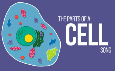 The Parts of a Cell Song